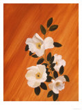 Blossoms on Orange Lámina giclée por Hampton Hall