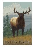 Estes Park, Colorado, Elk Scene Print
