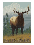 Estes Park, Colorado, Elk Scene Print by  Lantern Press