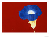 What's the Story, Morning Glory Giclee Print by Gregory Garrett