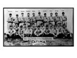 Detroit, MI, Detroit Tigers, Team Photograph, Baseball Card Posters