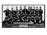 Chicago, IL, Chicago Cubs, Team Photograph, Baseball Card Posters
