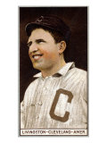 Cleveland, OH, Cleveland Naps, Paddy Livingston, Baseball Card Print