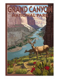 Grand Canyon National Park, Arizona, Deer Scene Print by  Lantern Press
