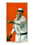 Washington D.C., Washington Nationals, Dolly Gray, Baseball Card Posters by  Lantern Press