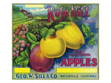 Rose Hill Brand Apple Label, Watsonville, California Poster