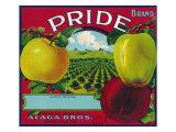 Pride Brand Apple Label, Watsonville, California Prints by  Lantern Press