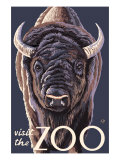 Visit the Zoo, Bison Up Close Prints by  Lantern Press