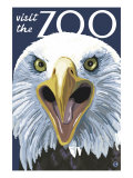 Visit the Zoo, Eagle Up Close Kunstdrucke von  Lantern Press