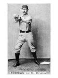 Omaha, NE, Omaha Minor League, Wally Andrews, Baseball Card Poster