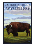 Jackson Hole, Wyoming, Buffalo in Field Poster by  Lantern Press