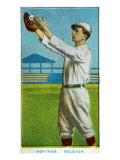 Raleigh, NC, Raleigh Southern League, Hoffman, Baseball Card Posters