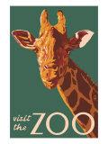 Visit the Zoo, Giraffe Up Close Giclee-tryk i høj kvalitet af  Lantern Press