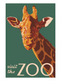 Visit the Zoo, Giraffe Up Close Print by  Lantern Press