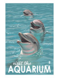Visit the Aquarium, Dolphins Scene Poster di  Lantern Press