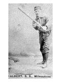 Milwaukee, WI, Milwaukee Minor League, Albert, Baseball Card Posters by  Lantern Press