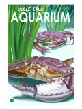 Visit the Aquarium, Dungeness Crab Scene Posters by  Lantern Press