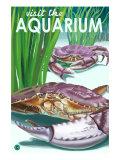 Visit the Aquarium, Dungeness Crab Scene Posters