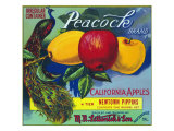 Peacock Brand Apple Label, Watsonville, California Art by  Lantern Press