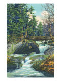 White Mountains, New Hampshire, View of the Franconia Notch Basin Posters by  Lantern Press