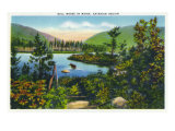 Maine, View of a Bull Moose in the Katahdin Region Poster