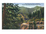 Great Smoky Mts National Park, TN, Scenic View of a Highway Curve Prints