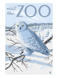 Visit the Zoo, Snowy Owl Scene Posters by  Lantern Press