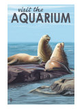 Visit the Aquarium, Sea Lions Scene Prints by  Lantern Press