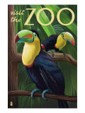 Visit the Zoo, Tucan Scene Poster by  Lantern Press