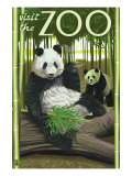 Visit the Zoo, Panda Bear Scene Posters by  Lantern Press
