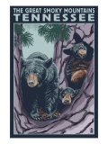 Great Smoky Mts National Park, TN, Black Bear and Cubs in Tree Prints