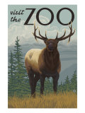 Visit the Zoo, Elk Solo Posters by  Lantern Press
