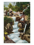 Rocky Mountain National Park, Colorado, View of Horseshoe Falls in Estes Park Art by  Lantern Press