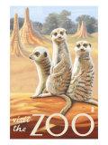 Visit the Zoo, Meerkats Scene Poster by  Lantern Press