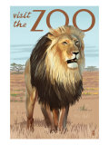 Visit the Zoo, Lion Scene Art by  Lantern Press