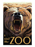 Visit the Zoo, Bear Roaring Prints