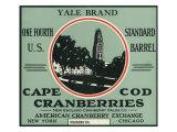 Cape Cod, Massachusetts, Yale Brand Cranberry Label Print