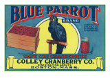 Boston, Massachusetts, Blue Parrot Brand Cape Cod Cranberry Label Prints