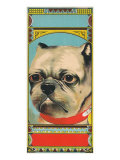 Bulldog Tobacco Label Poster