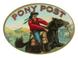 Pony Post Brand Cigar Box Label Poster