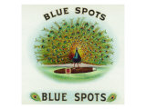 Blue Spots Brand Cigar Box Label Prints by  Lantern Press