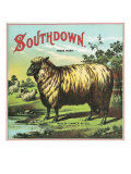 Southdown Brand Tobacco Label Prints by  Lantern Press