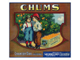 Charter Oak, California, Chums Brand Citrus Label Posters