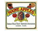 Hebron, Maine, Maine Apples Brand Apple Label Art by  Lantern Press