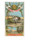 Good Times Honey Dew Brand Tobacco Label Posters