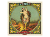Virginia, Venus Brand Tobacco Label Prints