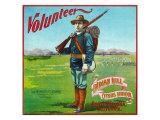 North Pomona, California, Volunteer Brand Citrus Label Prints by  Lantern Press