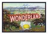 Escondido, California, Wonderland Brand Citrus Label Print