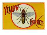Yellow Hornet Brand Cigar Box Label Prints by  Lantern Press