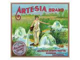 Riverside, California, Artesia Brand Citrus Label Prints by  Lantern Press